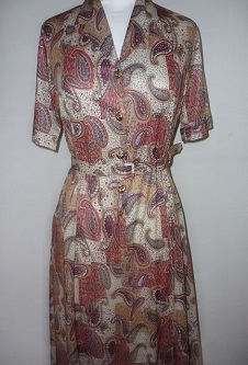 Nicole Lewis S/Sleeve Dress - Rust/Beige Paisley