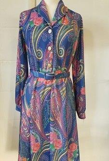 Nicole Lewis Long Sleeve Collar Dress - Blue Paisley